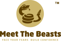 [Motivational Hands-On Activities & Workshops That Will Make You Feel Great About Yourself - Meet The Beasts for Business]