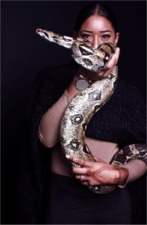 [Charlie Our Corn Snake on a Fashion Photoshoot]